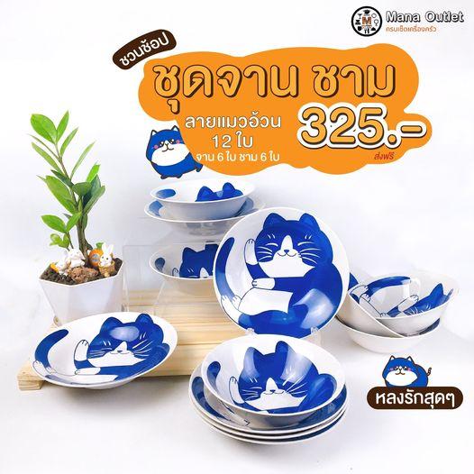 ชุดจานเซรามิก ลายแมวอ้วน 12ใบ By ManaOutlet